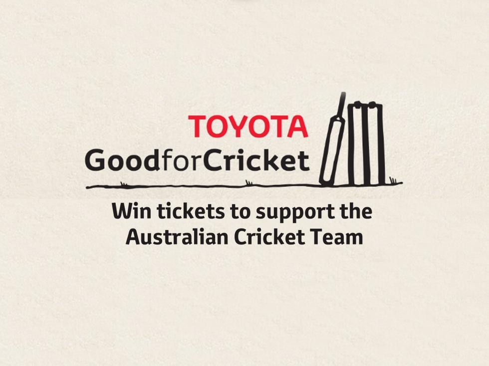 cricket-team-blog
